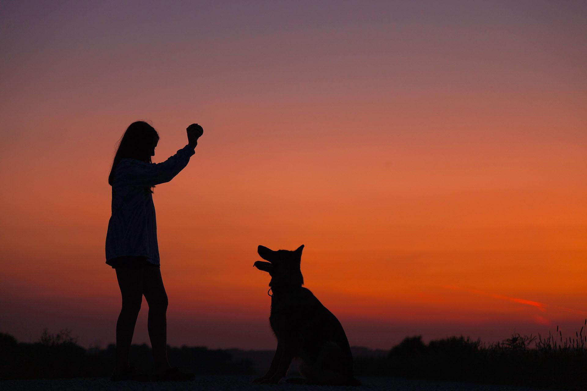 Owner training her dog