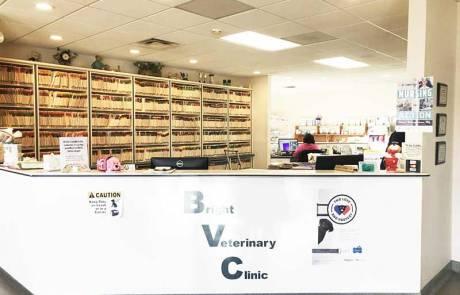 Front Desk - Bright Vet Clinic