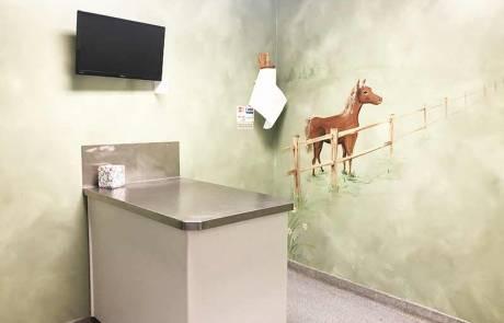 Exam Room - Bright Vet Clinic