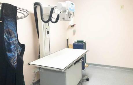 Radiology - Bright Vet Clinic