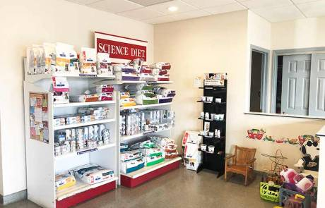 Waiting Room - Bright Vet Clinic