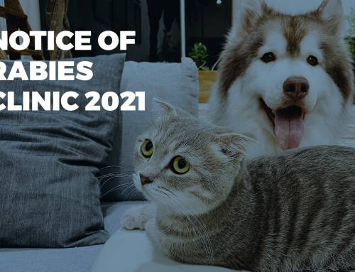Notice Of Rabies Clinic 2021
